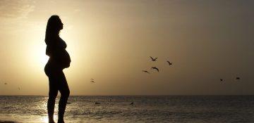 Malta | Maternity Fund Contribution 2017 rates