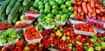 Malta | RA1 – Declaration of Agricultural Produce – 30th June